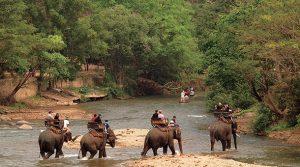 Горящий тур в Тайланд